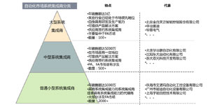 2013中国系统集成商多用户报告