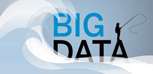大数据战略、管理与生态