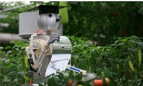 农用机器人研发迈向新阶段