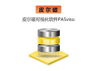 皮尔磁可视化软件PASvisu