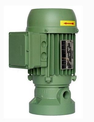 专业销售SACEMI低压泵