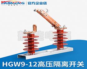 HGW9-12型户外高压隔离开关 柱上隔离开关 10KV高压开关