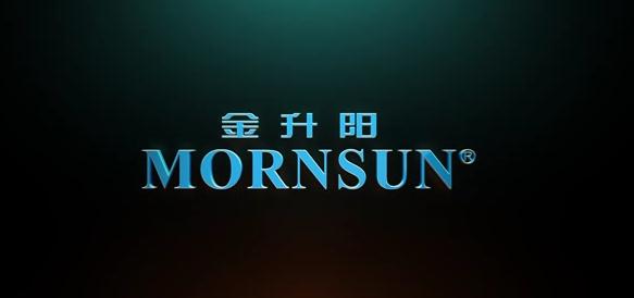金升阳(中文版)成片