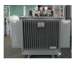 创联汇通 S11-1000/10油浸式变压器